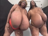 4 huge mature breasts